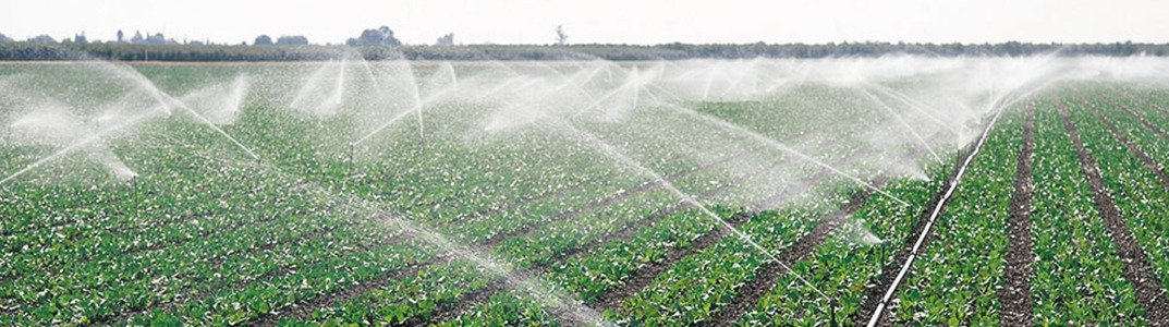 Irrigated Lands Reporting Documents